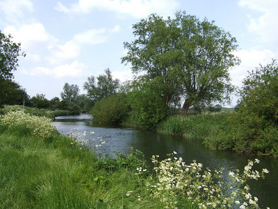 grantchester_meadow