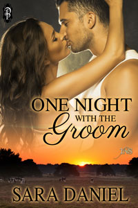 One Night With the Groom