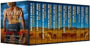 cowboy 12 pack cover